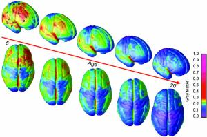 Grey matter changes over time